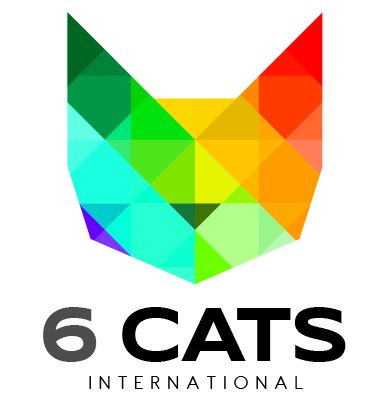6 CATS International: Tax partner