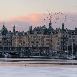 A guide to contracting in Sweden