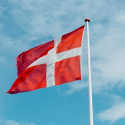 Danish government tax contractors